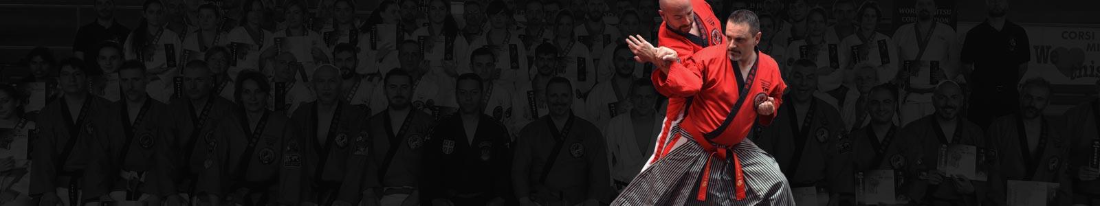 SLIDE-2-Wjjc-ju-Jitsu-World-Ju-Jitsu-corporation